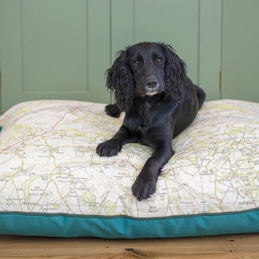 Personalised Map Dog Bed